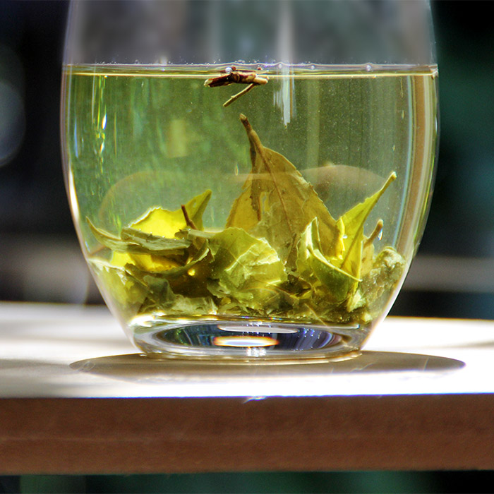 Organic Pure Sencha Green Tea