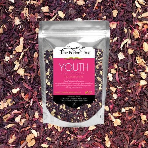 youth super antioxidant tea hibiscus ginger the potion tree