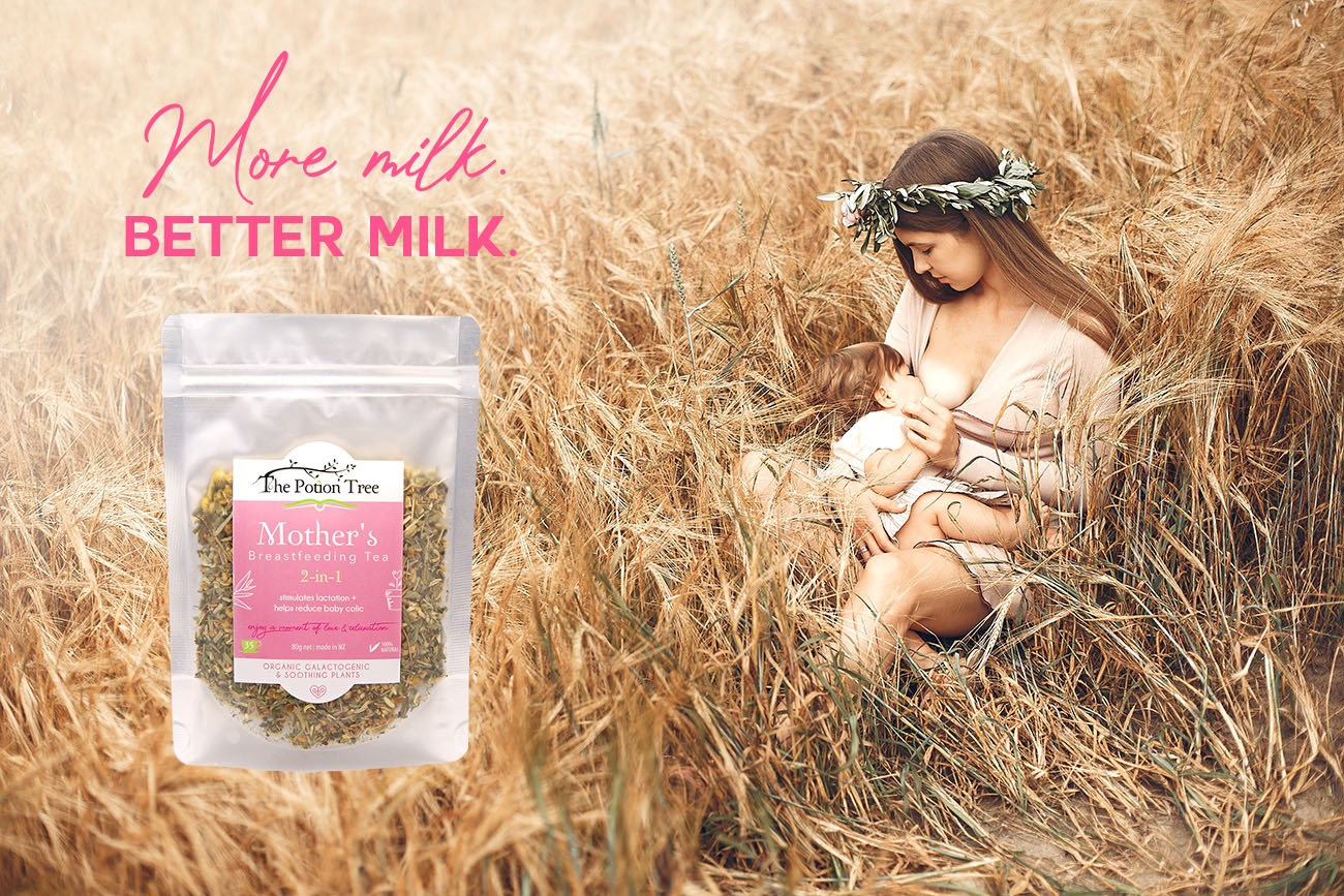 best breastfeeding tea nz organic milk mother galactogenic baby colic soothing pregnant