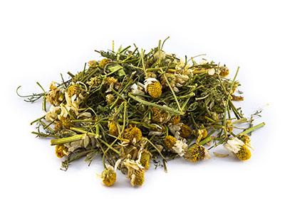 chamomile for children